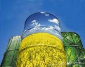 Украина заменит газ биотопливом?