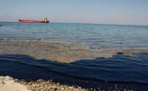 Крупнейшая экологическая катастрофа в истории Кипра: на восстановление потребуются годы