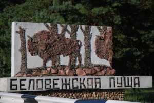Иностранцы смогут приехать Беловежскую пущу без визы