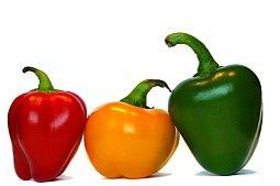 Овощи - основа здорового питания