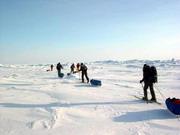 Белорусские полярники вернулись из антарктической экспедиции